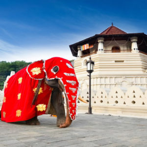 Temple-of-the-Sacred-Tooth-Relic